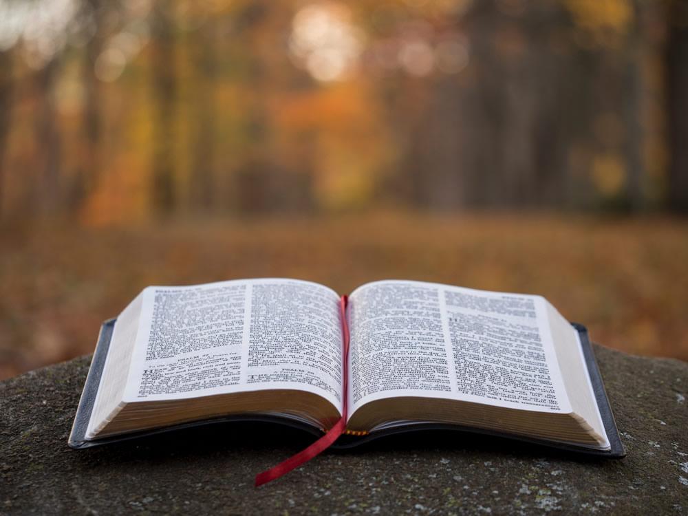 Evangeismo Online – Devocionais